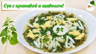 Суп с крапивой и щавелем: очень простой и вкусный рецепт с яйцом (Soup with nettle and sorrel)