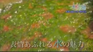作曲 Water Color 近谷直之.