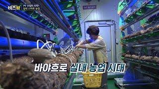 [비즈왕] 한국도시농업 - 농업도 4차산업 시대! &#…