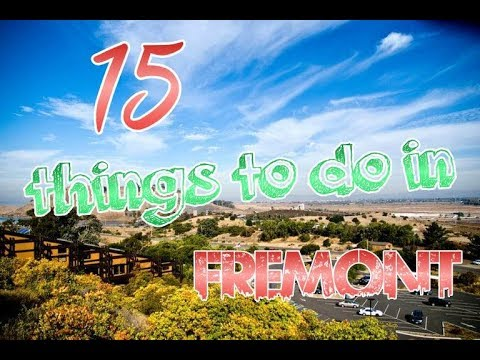 Top 15 Things To Do In Fremont, California