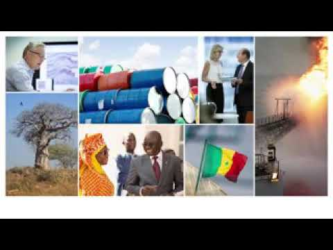 GAMBIA BRITISH OIL COMPANY FAR LIMITE  EXPLAIN OIL FIELD THEY FIND IN THE GAMBIA
