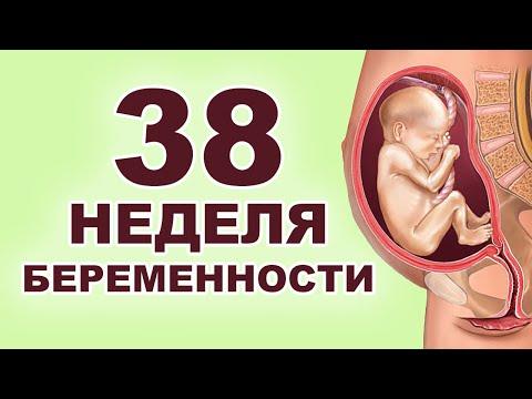 Что происходит с ребенком и мамой на 38 неделе беременности?