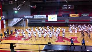 Mount Carmel Carmelettes Advanced Pom Pre-Practice