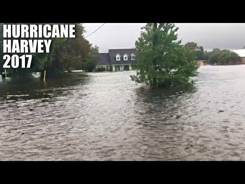 My experience during Hurricane Harvey in Baytown, TX (vlog #70)
