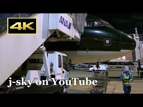 [4K] STARFLYER's night flight movie - from Osaka Kansai to Tokyo Haneda / 関空(夜)~羽田(夜)