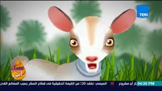 عسل أبيض - هل أفلام الكارتون خطر على عقول أطفالنا؟