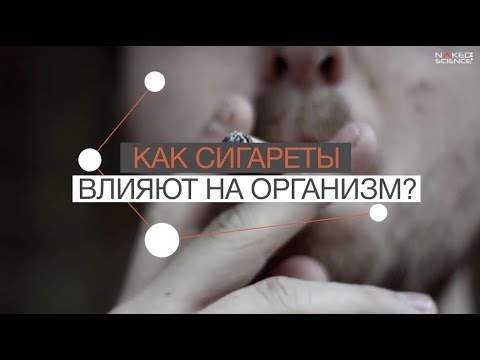 Как сигареты влияют на организм?