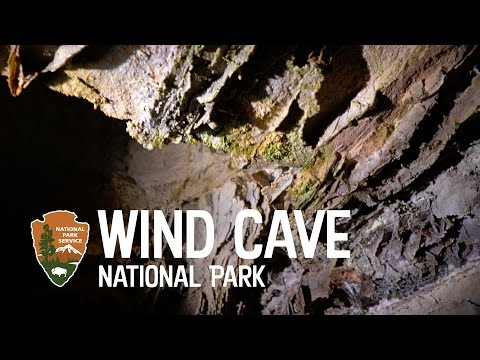 Wind Cave National Park