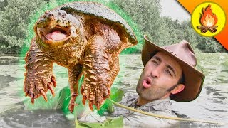 RESPECT the SNAPPER...Turtles can be Dangerous!