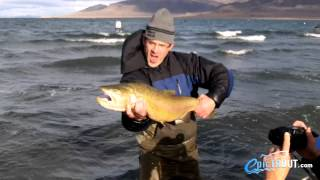 Pyramid lake cutthroat trout piggys