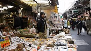 Tokyo, Japan (Part 1)