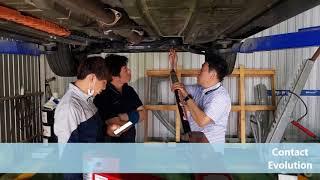 카벤치(Carbench muraena) 영상2