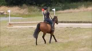 Video Lucy & Little Chap - XC Schooling - Little Mattingley - 12th July 2015 download MP3, 3GP, MP4, WEBM, AVI, FLV September 2017
