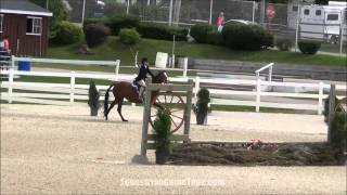 Gingersnap At Brandywine Valley Summer Series Ii 2014 Trip