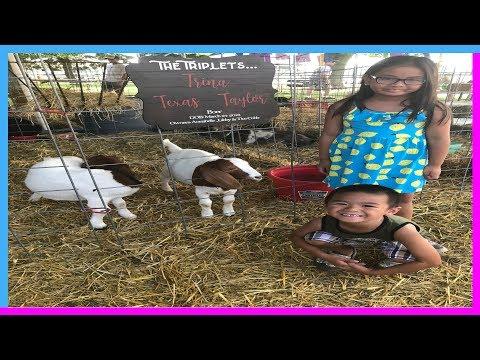 Salem County Fair 2018