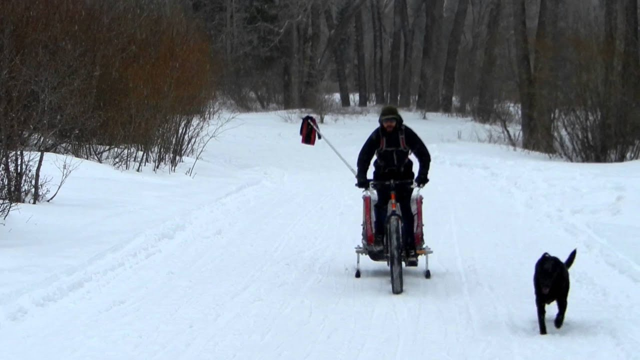 fatback snow biking with a chariot cougar 2 bike trailer. Black Bedroom Furniture Sets. Home Design Ideas
