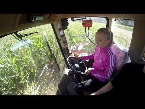Ensilage de maïs 2016 - Maize silage 2016 - John Deere 7480 ProDrive