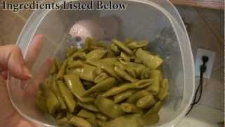 Quick And Easy Green Beans (veda Day18)