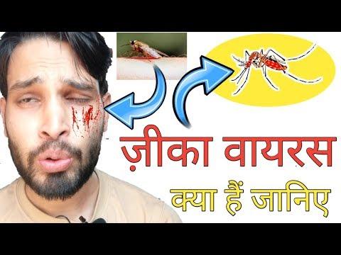 zika-virus:-क्या-हैं-ज़ीका-वायरस?-zika-virus-in-india-|-vishal-online-classes