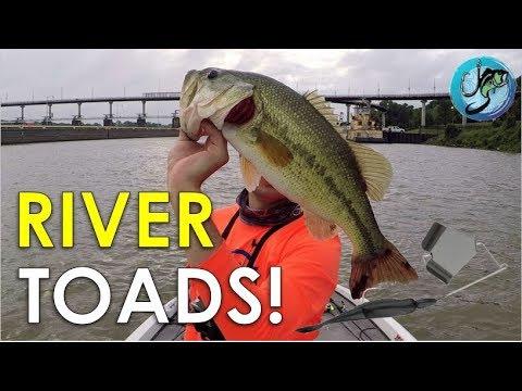 My Best Summer Pattern For River Bass   Bass Fishing Strategies