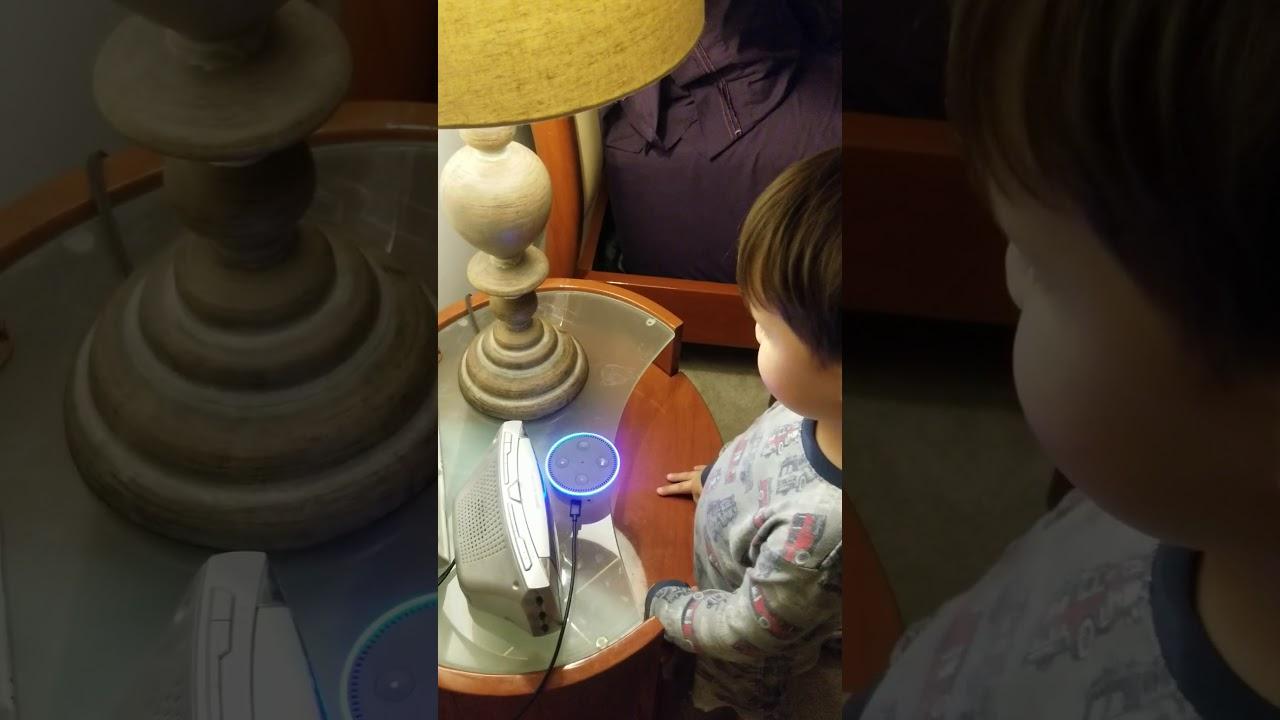 Alexa play despacito - YouTube