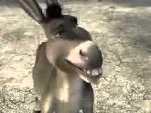 gülmeli video 2015