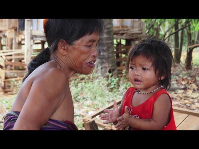 Un village au sud du Laos