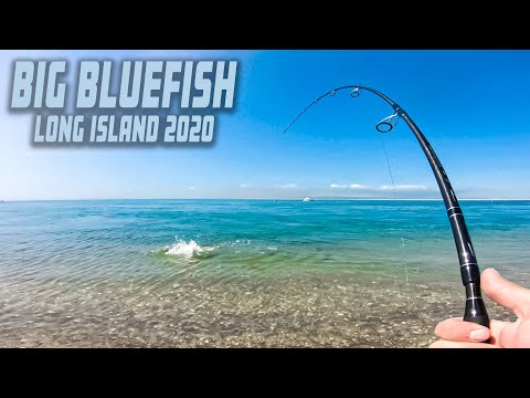 BIG BLUEFISH - Light Tackle Review - Surf Fishing Long Island - Spring 2020