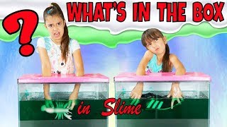 WHAT'S IN THE BOX CHALLENGE - IN SLIME!!!
