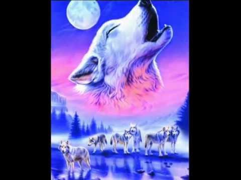 Fantasy Bilder Wölfe
