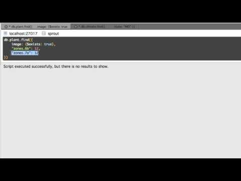 mongodb-complex-queries-explained