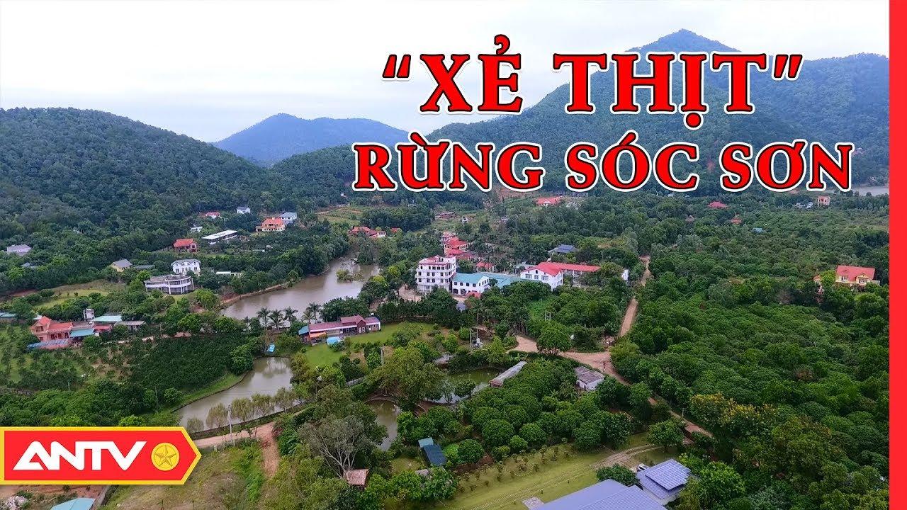 Sóc Sơn: Có hay không biệt thự xây dựng trên đất rừng phòng hộ?   ĐIỀU TRA   ANTV