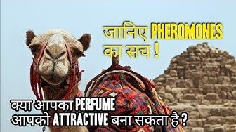 """Pheromones"" in your Perfume 
