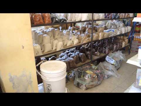 Corozal, Belize | Grocery Store
