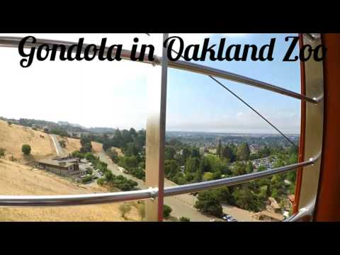 Gondola in Oakland Zoo