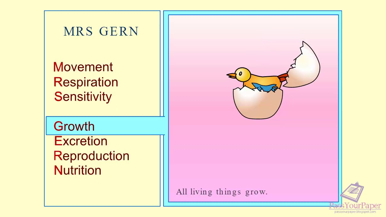 the seven processes of life Plants and life processes 1 the 7 life processes and labelling plants 2 do you know the seven processes of life.