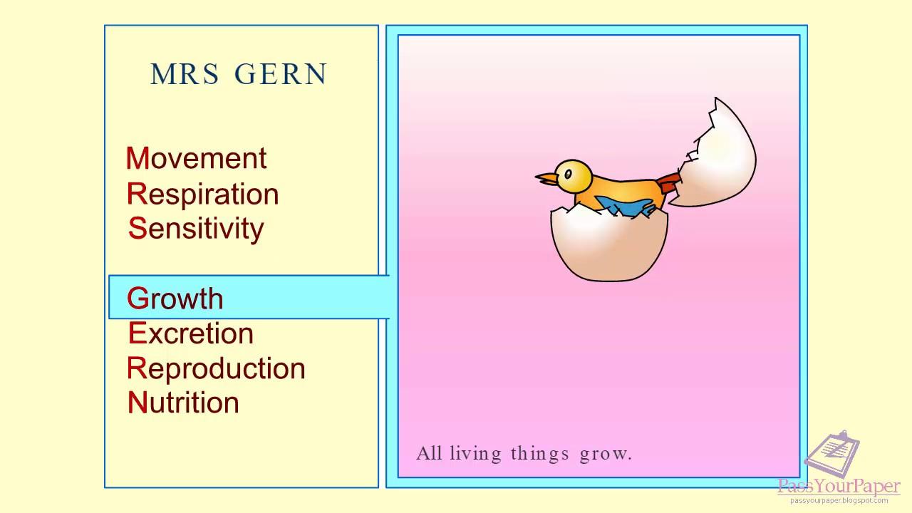 7 life Processes Biology MRS GERN YouTube – Life Processes Worksheet