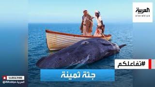 تفاعلكم   صياد يمني يعثر على ثروة بالملايين في أحشاء حوت!