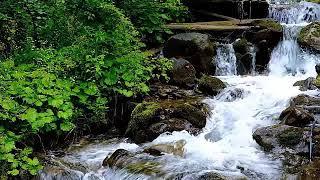 Música Relajante Zen para Calmar la Mente, Eliminar el Estres y la Ansiedad, Música de Piano # 26