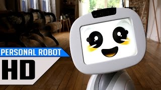 Top 5 - Personal Robots For Everyone