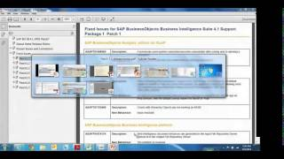 SAP BusinessObjects BI 4.1: Installation and Patching
