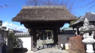 大山街道歩き旅#21 【愛甲宿】→【糟屋宿】 2017/01/21