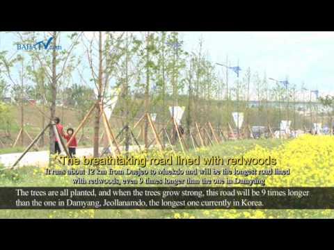 'Busan' the Nakdong River Age Has Dawned