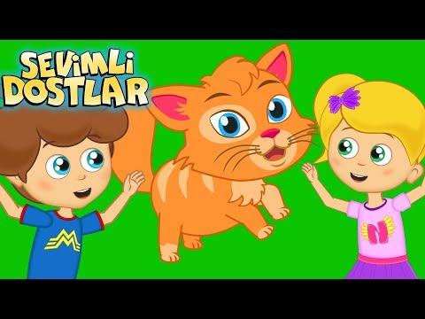 Kedi Miyav Dedi Ve Sevimli Dostlar Ile 75 Dakika Çizgi Film Çocuk Şarkıları