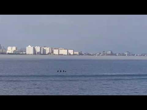 US military, Malaysian cops train in Penang waters