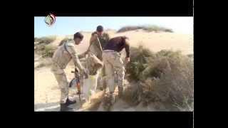 القوات المسلحة تواصل تصفية جيوب الإرهاب فى سيناء