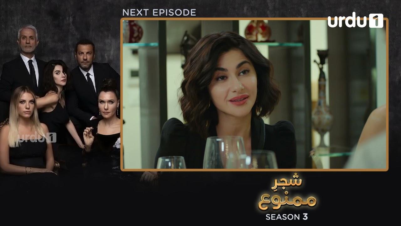 Shajar-e-Mamnu   Episode 228 Teaser  Turkish Drama  Forbidden Fruit   Urdu Dubbing   22 October 2021