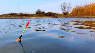 рыбалка на карася ЧУТЬ НЕ ПОПАЛ НА 30 Т