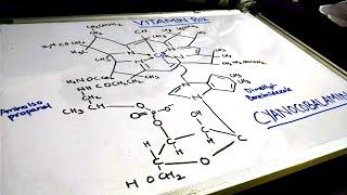 ALL ABOUT VITAMIN B12 (COBALAMIN)-E-STUDY
