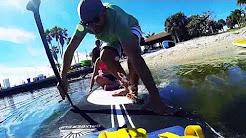 Palm Beach Paddle Board